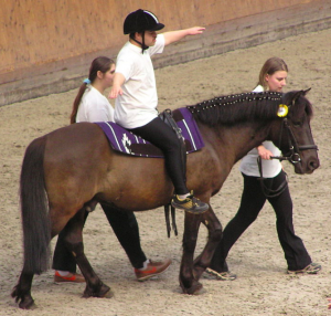 Horses and ponies assist people with impaired balance