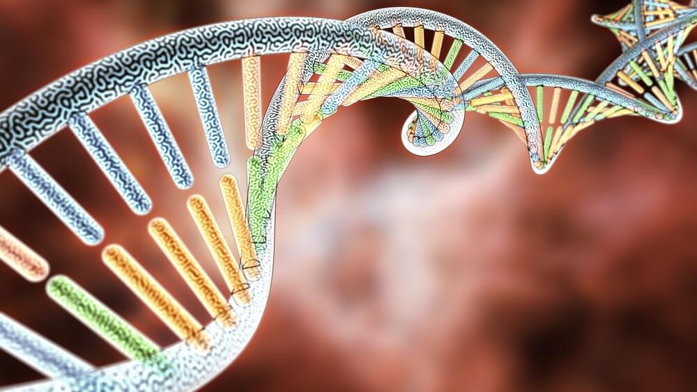 DNA Animated by Its Own Energy Field